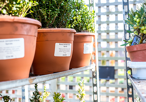Self-adhesive plant pot label