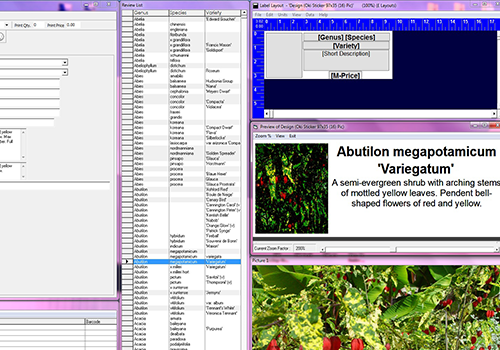 HLS Software Screenshot
